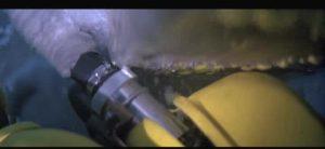NOOO!! My air hose!