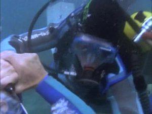 ...scuba fight!
